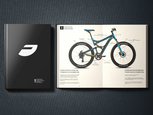 Design of corporate identity for the TM FORMULA