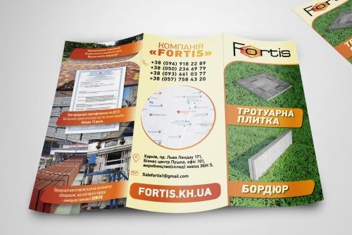 Design Flyer Fortis